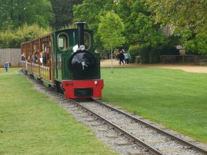 Cotswold Wildlife Park - Train