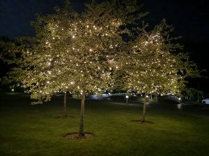 De Vere Cotswold Water Park - Gardens