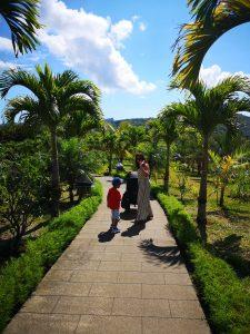 The Rhumerie de Chamarel Mauritius Walkway
