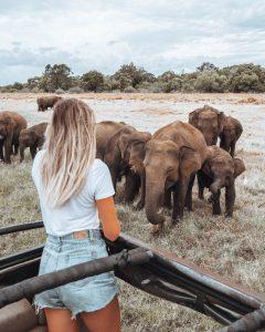 Beth Sandland - Sri Lanka